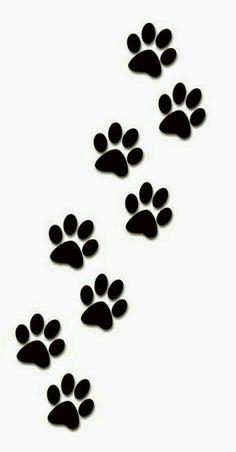 Doxie paw prints