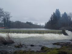 Santiam River in the early spring.