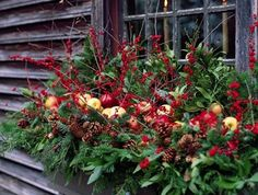 Winter Window Boxes garden-inspiration