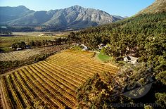 Le Petite Ferme Wine Estate, Franschhoek, Western Cape, South Africa - our favourite restaurant!
