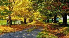 hermosa para un paseo por la tarde