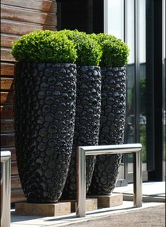 Tall Outdoor Planters and How to Benefit From Them : Tall Garden Planters. Home Garden Plants, Garden Planters, Planter Pots, Planter Ideas, Black Planters, Modern Planters, Tall Planters, Planters Flowers, Large Outdoor Planters
