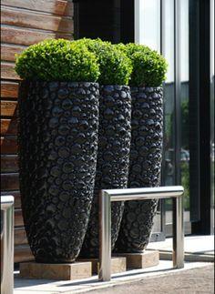 hoge potten, strakke planten voor een modern effect