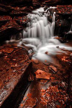 Low-Key-Autumn-Falls