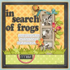 In Search of Frogs