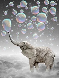 The Simple Things Are the Most Extraordinary (Elephant-Size Dreams) Art Print by Soaring Anchor Designs