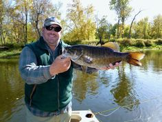 Top 10 Subsurface Flies for Smallmouth Bass - Orvis News