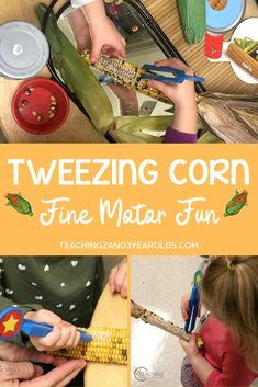 This tweezing corn activity is a fun way to build preschool fine motor skills. Perfect with your farm or fall theme! Fall Activities For Toddlers, 4 Year Old Activities, Preschool Activities At Home, Nature Activities, Preschool Class, Kindergarten, Five Senses Preschool, Preschool Fine Motor Skills, Motor Skills Activities