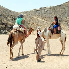 Ride camel