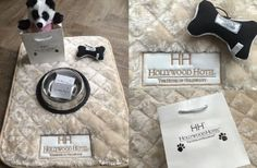 The Hollywood Hotel is always trying to offer the best services to our guests. Here are some current specials that are available for guests to enjoy. Hotels That Allow Dogs, Hotel Specials, Hollywood Hotel, Pet Friendly Hotels, Hotel Packages, Pet Travel, Special Deals, Hotel Deals, First They Came