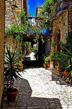 Village, Troodos Mountains, Cyprus http://www.travelbrochures.org/107/europa/go-visit-the-land-of-cyprus