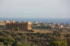 """Agrigento is named as """"Città dei templi"""" (temples city) because of the presence of the famous Temples Valley from Ancient Greek period. Agrigento is UNESCO HERITAGE from Catania, Palermo, Sicily Tours, Places To Travel, Places To Visit, Our Adventure Book, Temple City, Ancient Greek Architecture, Templer"""