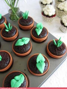 cupcake idea for a gardening party