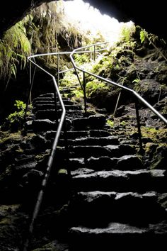 We did this on our last trip, so cool! Lava Tube on the Hawaiian Island of Maui