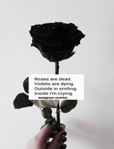Roses are dead. Violets are dying. Outside in smiling. Inside i'm crying. Red Roses Quotes, Roses Are Red Poems, Blue Quotes, Quotes Tired Of Trying, Im Lost Quotes, Dead Inside Quotes, Depression Poems, Rhyming Quotes, Im Dying Inside