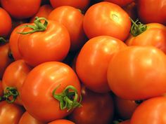 Table tomatoes are one of the most cultivated crops in the world and there are several hundred varieties of tomato available. The fruit is rich in lycopene and Vitamin C. Preserving Tomatoes, Varieties Of Tomatoes, Tomato Farming, Soil Texture, Tomato Seeds, Organic Matter, Annual Plants, Irrigation, Vitamin C