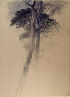 """John Ruskin   Study of part of the trees in Turner's """"Crossing the Brook"""", before 1872"""
