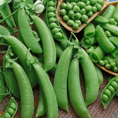 Produces deep green sweet, juicy, crunchy snap peas of superb quality. The heat tollerant vines are short and neat-growing inches tall and no support is required. Resistant to powdery mildew and pea enation virus. Vegetable Seeds For Sale, Growing Vegetables From Seeds, Growing Seeds, Garden Seeds, Planting Seeds, Vegetable Gardening, American Meadows, Short Plants, Vegetables