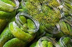Ogorki Kiszone (Brined Dill pickles)