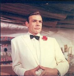 Blofeld S Cat James Bond Became Owner Of A Few White Persians Because Of These Movies