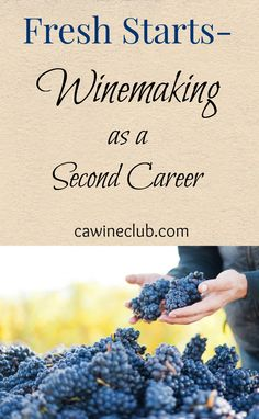 While some winemakers are born into the craft, others discover it after successful careers in vastly different fields. No matter how they found their way to winemaking, their passion definitely shines through. Backyard Vineyard, Pallet Pantry, California Wine Club, Homemade Wine Recipes, Planting, Gardening, Wine Images, Growing Grapes, Beverages