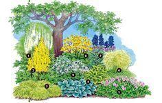 Gehölzunterpflanzung – unterm Baum wächst doch was - Gartengestaltung   Dekoration - Gartenpraxis - Mein Garten - gartenflora.de