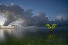 Top 10 sunrises around the world: Fiji