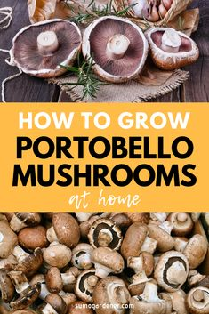 How to Grow Portobello Mushrooms at Home in 2020 Easy Guide Grow Your Own Mushrooms, Growing Mushrooms At Home, Garden Mushrooms, Edible Mushrooms, Stuffed Mushrooms, Growing Shiitake Mushrooms, Wild Mushrooms, Home Vegetable Garden, Fruit Garden