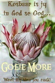 Good Night Image, Good Morning Good Night, Good Morning Wishes, Good Morning Quotes, Cute Quotes, Happy Quotes, Get Well Soon Quotes, Birthday Qoutes, Lekker Dag