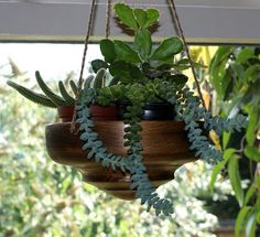 The shed and beyond.: Hanging bowls for plants...