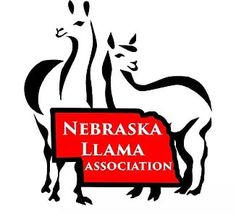 Picture Llama Arts, Art Logo, Nebraska, Logos, Pictures, Fictional Characters, Photos, Logo, Drawings