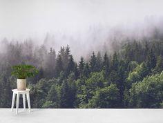 Trees in forest Wallpaper Wallpaper Free, Lit Wallpaper, Forest Wallpaper, Photo Wallpaper, Forest Light, Misty Forest, Forest Bedroom, Sunrise Wallpaper, Tree Wall Murals