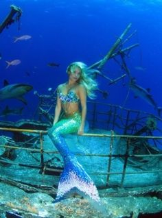 Little Mermaid Erg Mooie 9559