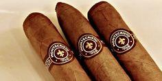 Premium Cigar of the Month Club! Cigar Sampler, Montecristo Cigars, Premium Cigars, Pipes, Ds, Trays, Coupons, Club, Coffee