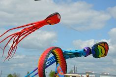 Large kites fill the skies in West Baton Rouge during Kite Fest #louisiana #westbatonrouge #portallen #kitefest #kite
