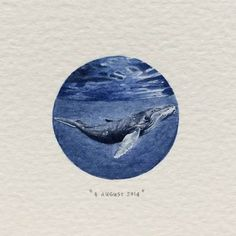 """Postcards for Ants is an ongoing painting project by Cape Town artist Lorraine Loots who has been creating a miniature painting every single day since January Day 220 : Humpback Whale Circle Drawing, Circle Art, Circle Painting, Lorraine, Painting Inspiration, Art Inspo, Detailed Paintings, Watercolor Paintings, Watercolors"