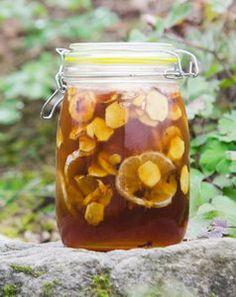 Zázračný zázvorový sirup s citronem a medem   Pleva