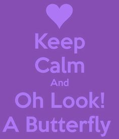 Keep Calm and Oh Look, A Butterfly