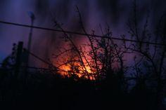 trotz der Ausgangsbeschränkungen konnte ich einen Sonnenuntergang festhalten. Aufgenommen mit meinem neuen Objektiv 400 – 800mm aus dem Fenster der Wohnung. Erst beim Fotografieren ist mir aufgefallen wie schnell doch die sonne am Horizont verschwindet. Dandelion, Flowers, Plants, Blog, Pictures, Lens, Sunset, Windows, Dandelions