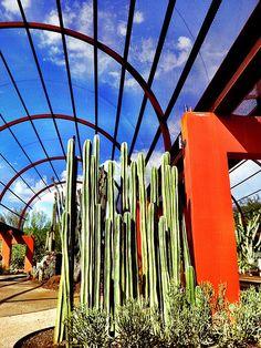The succulent gallery at the Desert Botanical Garden in Phoenix, Arizona.