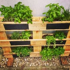 15 Beautiful Do-It-Yourself Pallet Gardens That You're Sure To Love Pallet Planter Box, Garden Planter Boxes, Pallet Fence, Old Pallets, Pallets Garden, Wooden Pallets, Deck, Bath And Beyond Coupon, Diy Pallet Projects