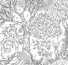 So many gorgeous adult coloring books! List of the top 100.