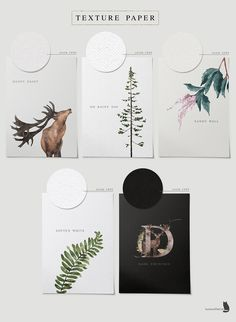 Into the Wild is an collection inspired by nature, with gorgeous flowers and the beauty of pine woodland. Let's every Wild Alphabet bring you to another forest Watercolor Wolf, Watercolor Animals, Digital Illustration, Graphic Illustration, Illustrations, Floral Bouquets, Floral Wreath, Paper Logo, Illuminated Letters