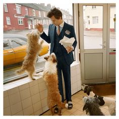 In a narrative sequence that echoes many famous photographs and scenes from British films, @harrystyles brings his pet chicken and dog into…