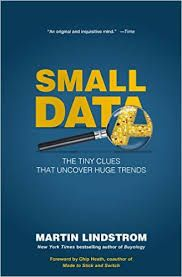 Image result for martin lindstrom small data