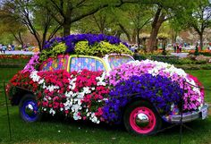 Wish I had an old car to fill with flowers!