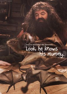 Norbit. ... ... ...I love Hagrid because he loves all the animals.....and really big spiders.