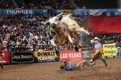 927 Air Time PBR‏@PBR March 26, 2017. COWBOYS BEWARE >> Air Time and Brutus headline this weekend's bull roster in AZ.