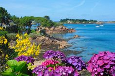 Île de Bréhat - Côtes d'Armor <3                                                                                                                                                                                 Plus Great Places, Places To See, Beautiful Places, Places Around The World, Around The Worlds, Brittany Ferries, Region Bretagne, Brittany France, French Brittany
