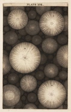 """A finite View of Infinity... the first depiction of multiple galaxies in a book. Thomas Wright, """"An Original Theory or New Hypothesis of the Universe"""", 1750.  (via Black Heart Press)"""